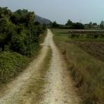 Cammino di Santa Giulia: L'interminabile linea bianca.
