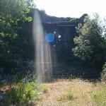 Cammino di Santa Giulia: Il seme del rinnovamento interiore