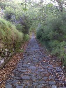 Cammino di Santa Giulia, Santa Giulia, Aggiornamenti del Cammino di S. Giulia 2013